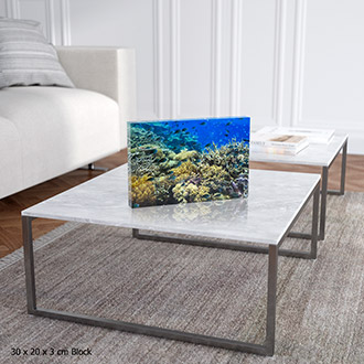acrylic block print with underwater coral reef scene on lounge table